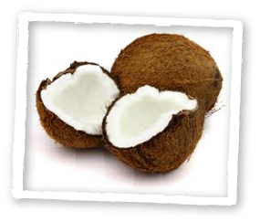 Monolaurin is derived from Coconut Oil
